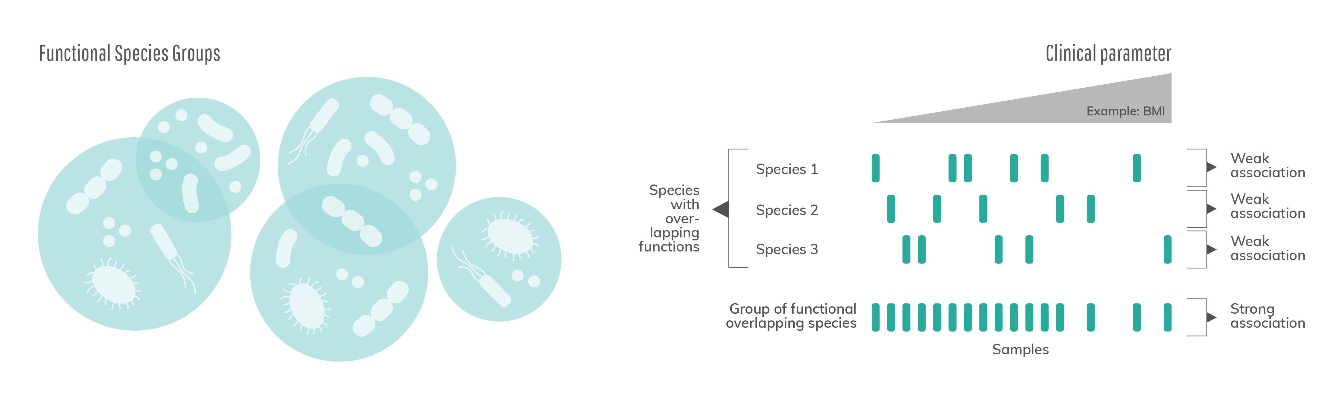 Functional Species Groups