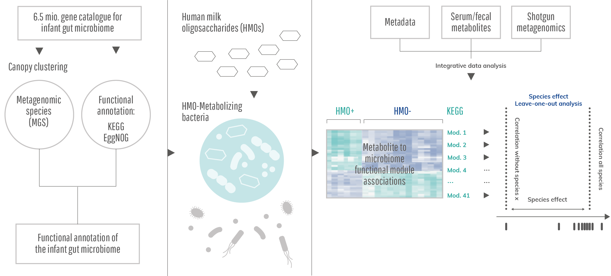 CLI_312_Infografik_Metagenomics_pipeline
